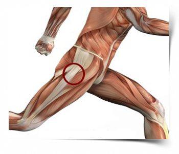 a csípőízület izmainak fájdalmainak kezelése)